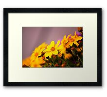 Look This Way Framed Print