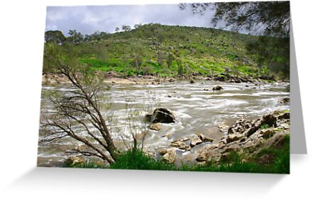 Rapid River by EOS20