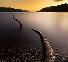 Loch Ness Monster by cieniu1