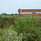 Roth Prairie by WildestArt