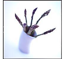 Sparrowgrass Photographic Print