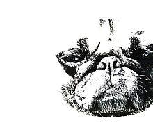 Pug Mug - Boss Edition by Repzen