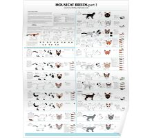 Housecat Breeds part 1 Poster