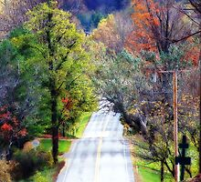 Country Lane by kalliope94041