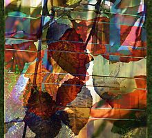 Glassy abstract by Sabine Spiesser