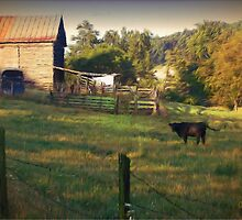 Lutz Hollow Pasture by Charles Oliver