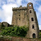 Blarney Castle, Co. Cork, Ireland by Lenarick