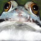 Sir Frog by Joyce