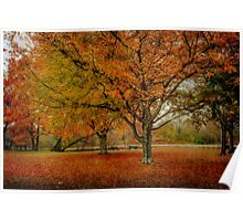 Newengland Colorful November. Poster