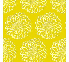 White dahlia on yellow background Photographic Print