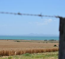 You Yangs from Portarlington by DanniMichelle