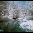 IR River by Pestbarn