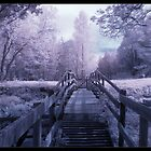 IR Bridge by Pestbarn