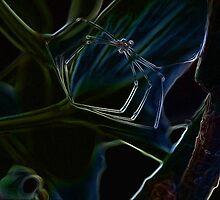 Fluorescent spider carcass by migueldelmonte