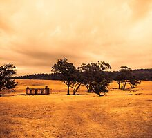 In The Country by DVJPhotography