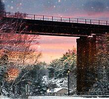 Northern Train Bridge by MichaelDTaylor