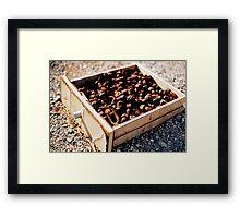 Nuts & Bolts Framed Print