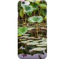 Water Lilies Yellow Water iPhone Case/Skin