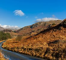 Duddon Valley Road by Trevor Kersley
