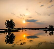 Yellow Water Sunset Reflections by Russell Charters