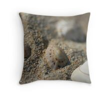 Shells, Sand & Pebbles Throw Pillow
