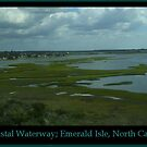 Intercoastal Waterway by Sprinkle