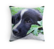 I M LONELY Throw Pillow