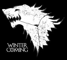 Winter Is Coming by badboy7