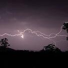 Lightning crawl by Julie Just