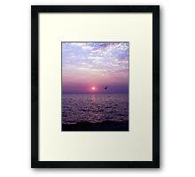 Morning Flight Framed Print