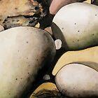 Coastal Rock Forms by Bill Proctor