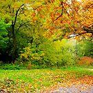 Autumn Season by Dawn M. Becker