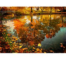 Reflection of the fall Photographic Print