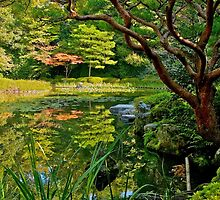 Heian Shrine pond garden, Kyoto, Japan by johnrf