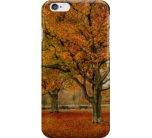 Newengland Colorful November. iPhone Case/Skin