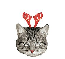 Red Nose Reindeer Cat! by SaoirseChic