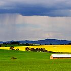 Colours of the Landscape by KathyT