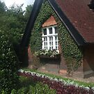 Vine Covered Cottage by coleen gudbranson