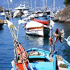 Fishing beauty in Portofino by robyenzo