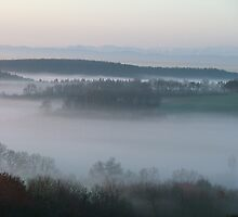 Mist in the valley by Nicky Hollingdale