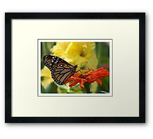 Yielding To Temptation Framed Print