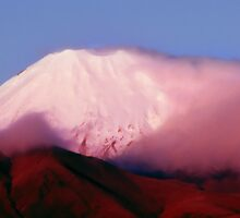 Mt Ngauruhoe - New Zealand by Andrew Brown