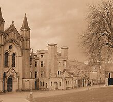 Buckfast Abbey by snurfdood