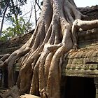 Jungle Temple in Cambodia by Ruth  Kennedy