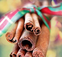 Cinnamon Sticks by Darren Fisher
