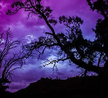 Purple Gloaming by DVJPhotography
