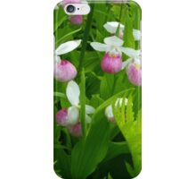 Showy Lady's Slipper iPhone Case/Skin