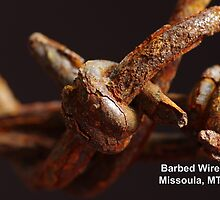 Rusty Barbed Wire by Jodie Kelley