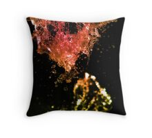 The Living Water (series 2/8) Throw Pillow