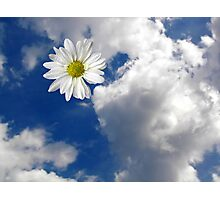 Heaven Scent Photographic Print